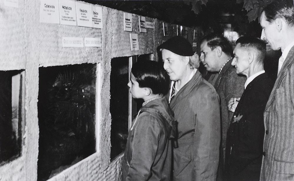 1. Dresdner Aquarien und Terrarienausstellung (1957), Terrarien