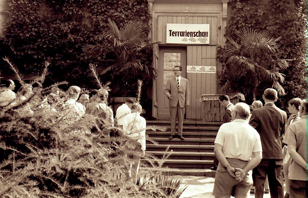 1967: 1. Dresdner Terrarienschau, Eröffnung