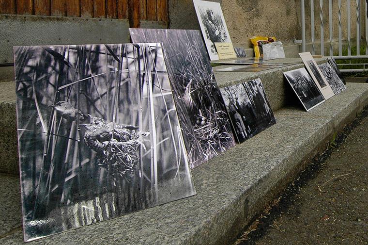 Exkursion auf den Spuren von Rudolf Zimmermann