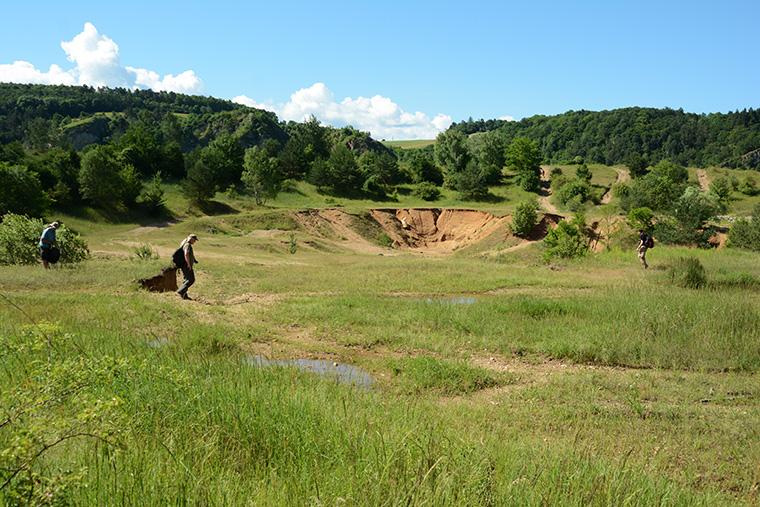 Wechselkröten Biotop, Berounka-Tal