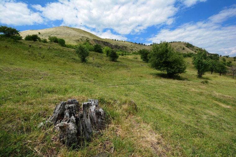 Berg Raná