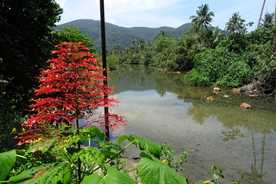 Koh Chang -Flusslauf Südküste
