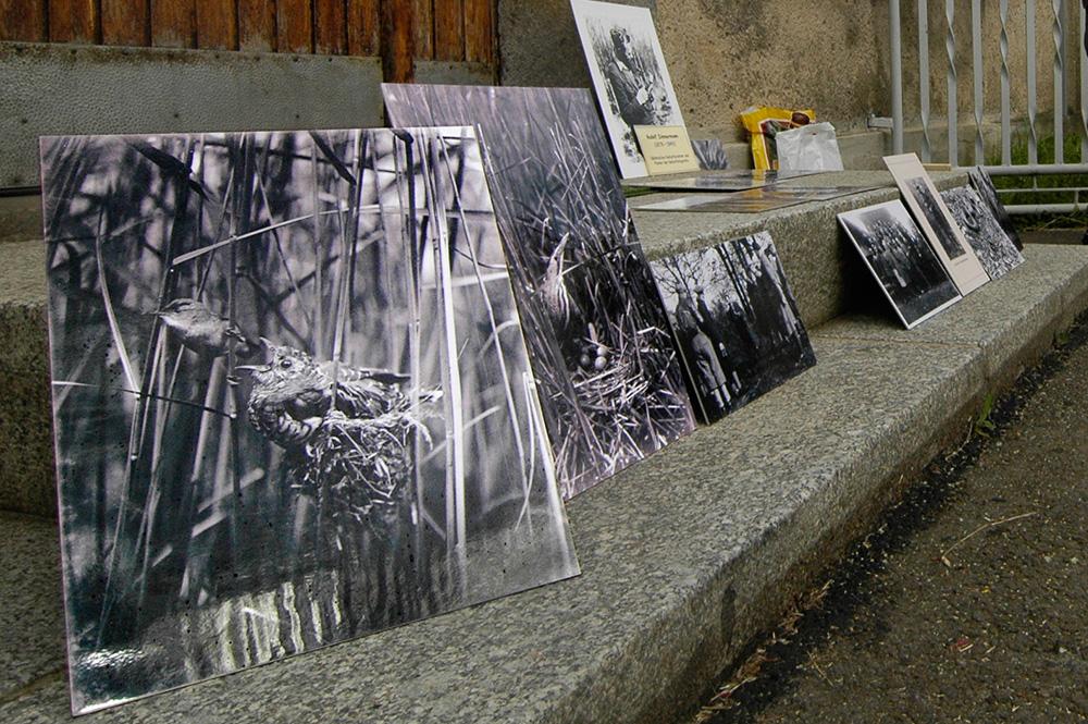 Fotografien von R. Zimmermann, aufgestellt während der Exkursion